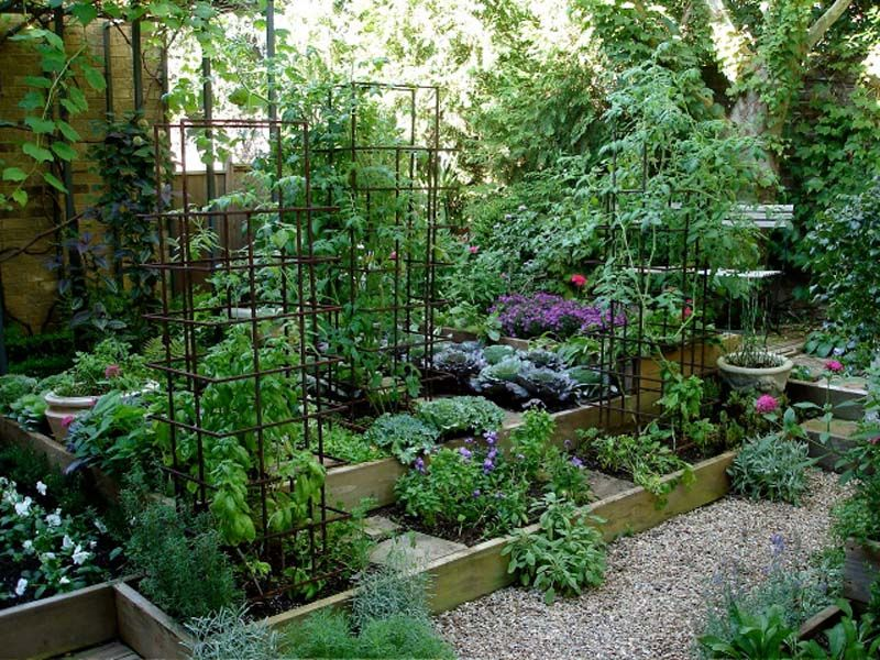 13 best ideas about raised garden beds on pinterest gardens small yards and raised beds