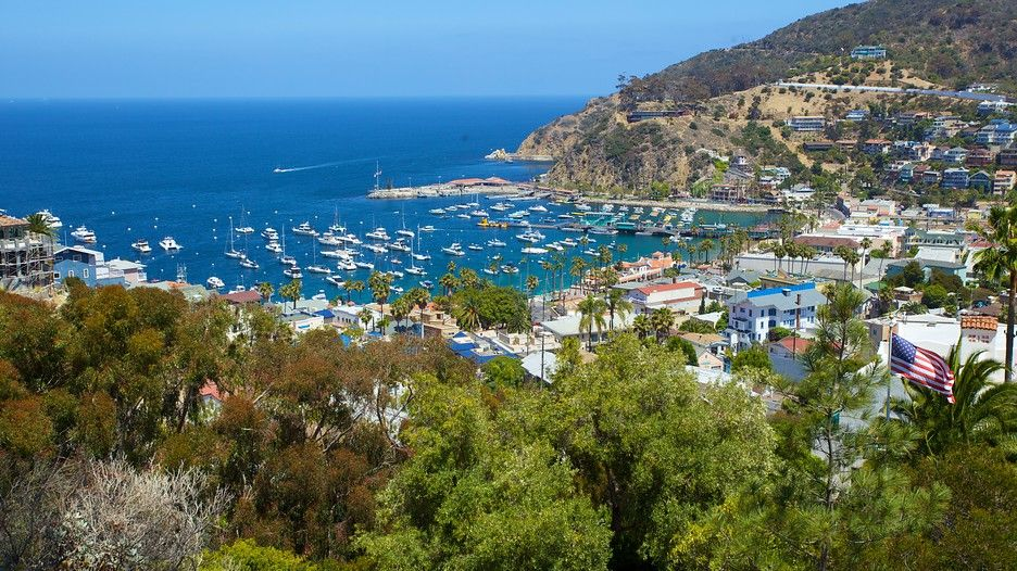 Catalina Island Vacation Packages Book Cheap Vacations Trips Expedia Catalina Island Hotels Vacation Trips Catalina Island