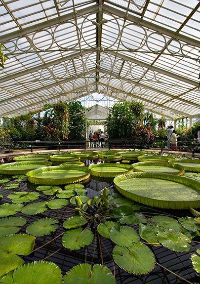 95fde9a91ff3fb63d0ea67f33b0684c0 - Where Is Kew Gardens London Located