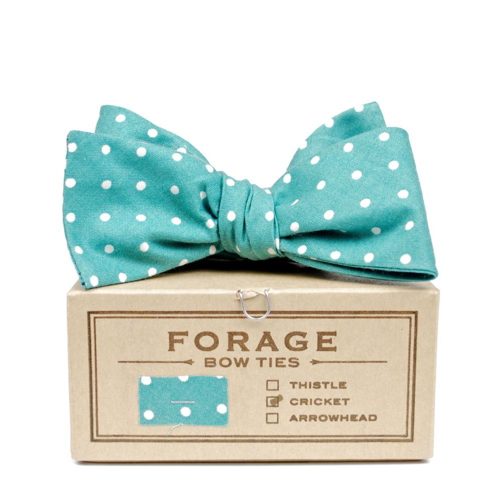 Forage u dots bow tie accessories u shoes pinterest tiffany