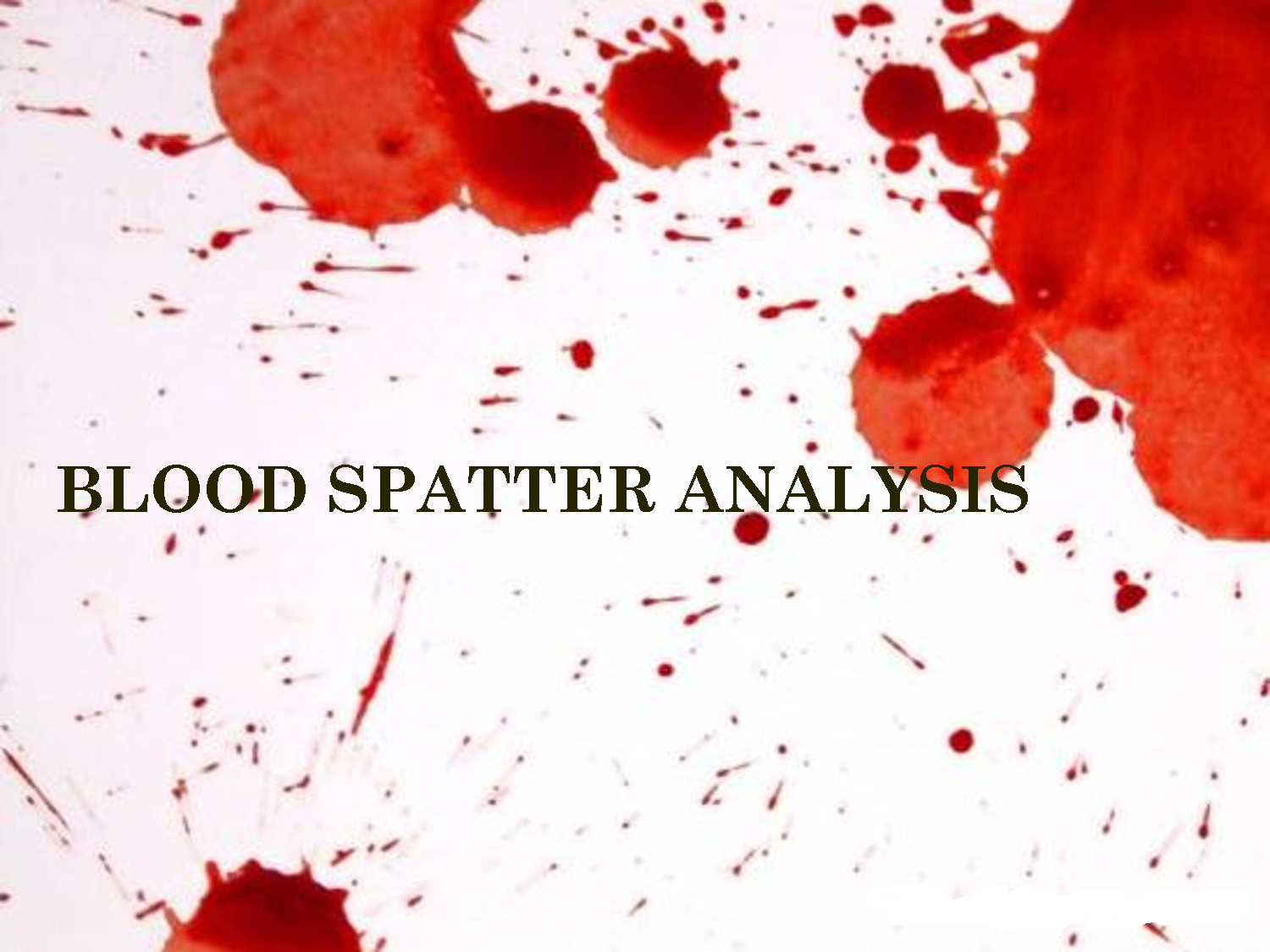 Pin On Forensics Blood Blood Spatter Project
