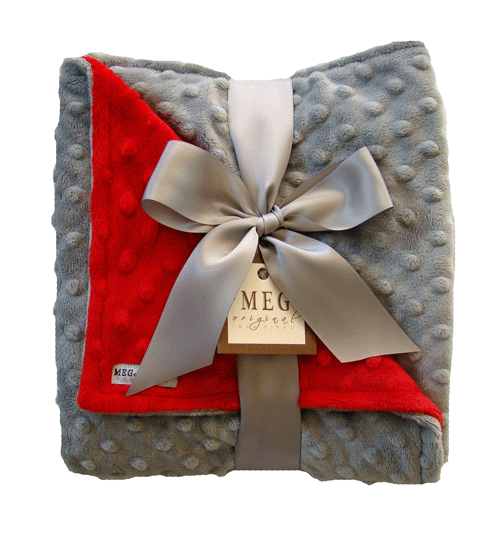 Silvery gray and red minky baby blanket personalize with a festive silvery gray and red minky baby blanket personalize with a festive color for the perfect negle Images