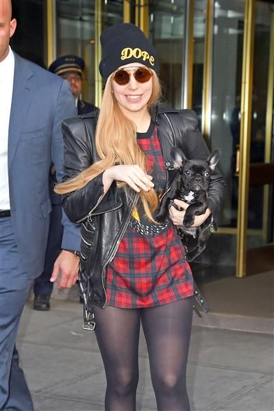 Lady Gaga and her pooch stepped out in NYC. See more stars and their street style on Wonderwall: http://on-msn.com/1nG5NG6