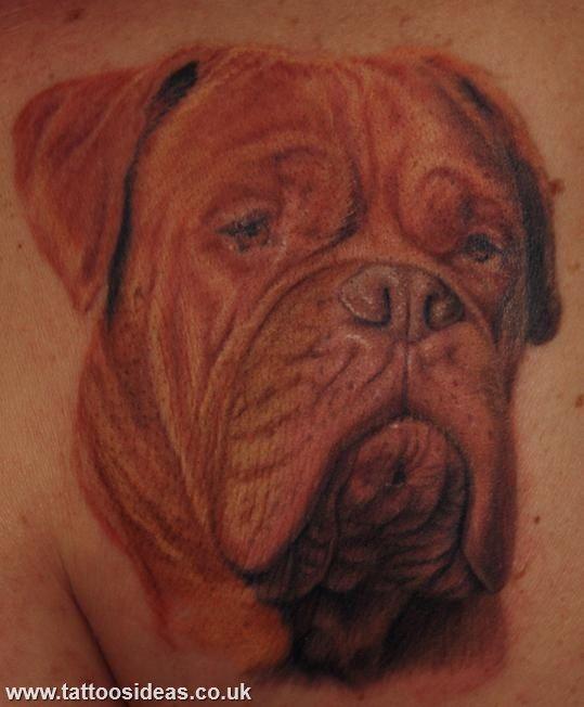 dogue de bordeaux tattoo   tattoo   pinterest   tatouage, piercings