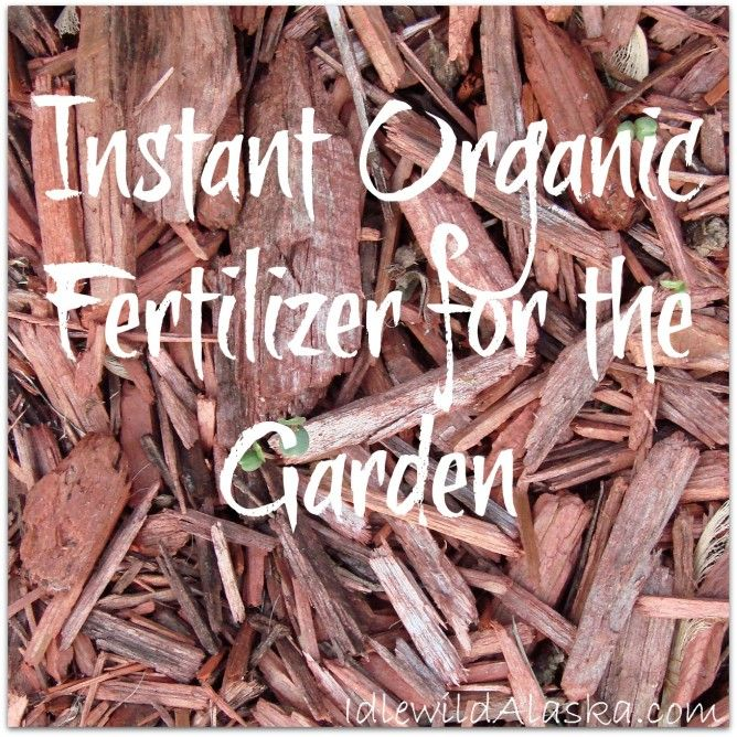 Does Your Garden Soil Need A Quick Boost? Check Out This Recipe For Instant  Organic