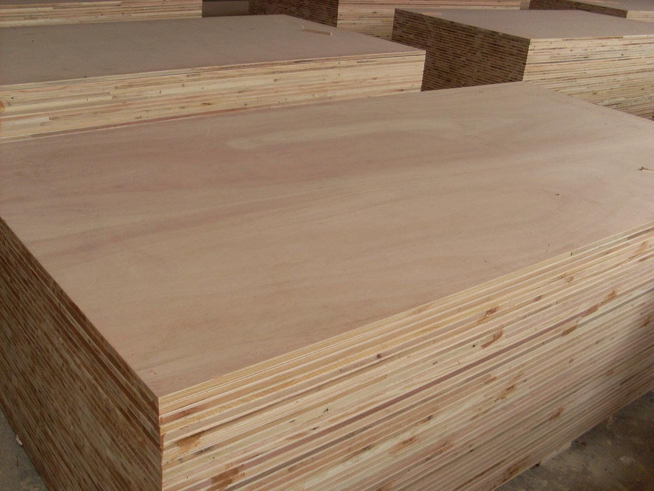 Plywood Block Board Blockboard Size 1220x2440x12 40mm Core Poplar Tung Hardwood Fir Face Back Okoume Bintangor Glue Mr E1e De Madera Madera Especies