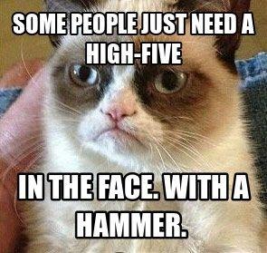 High Five Grumpy Cat Quotes Funny Grumpy Cat Memes Funny Cat Memes