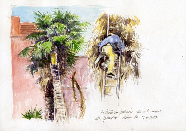 lami g rard taille du palmier de la cour de l 39 h tel le splendide rabat maroc aquarelle. Black Bedroom Furniture Sets. Home Design Ideas