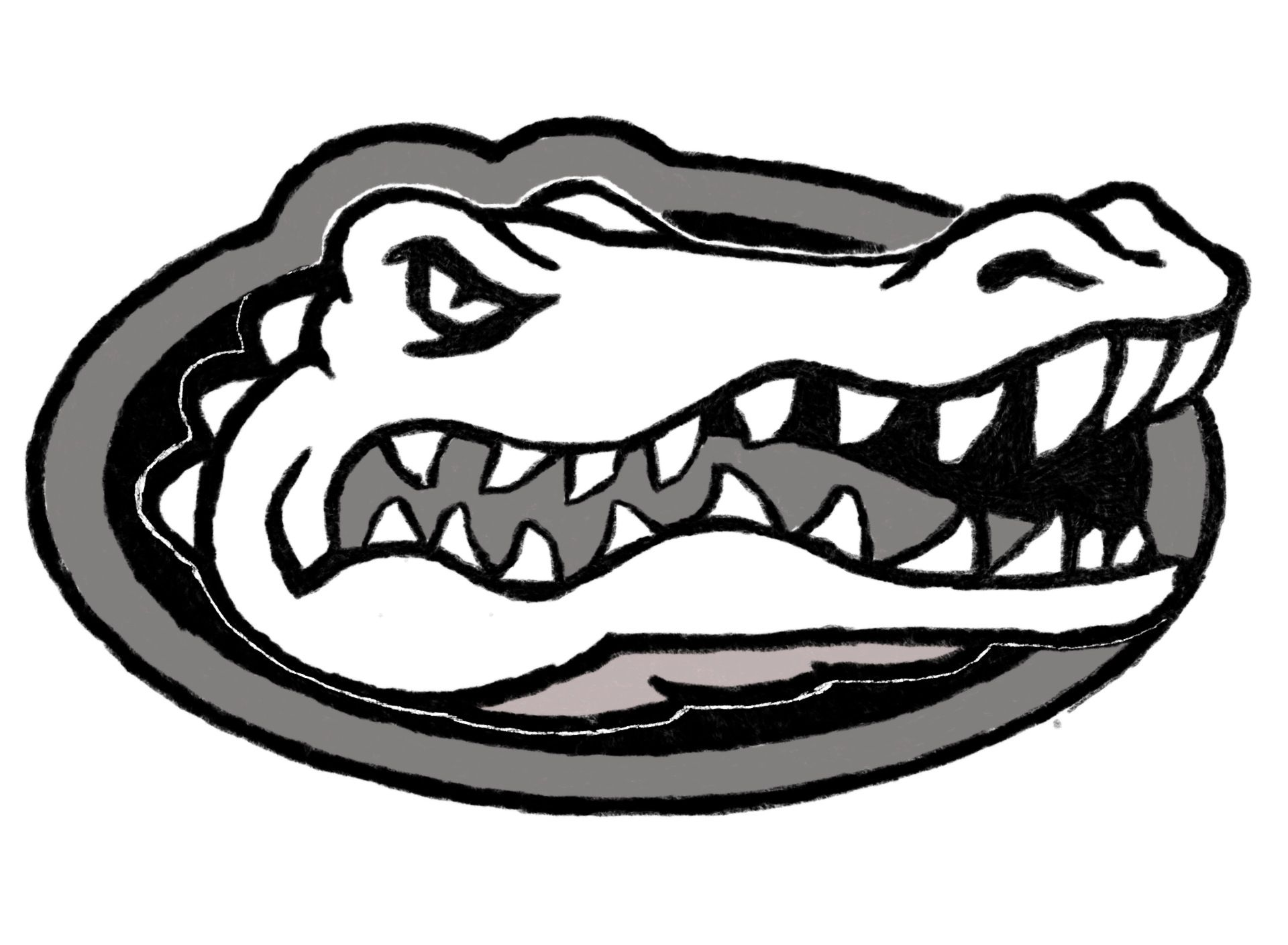 Florida Gators Mascot Using Procreate And Jot Pro On An Ipad 3