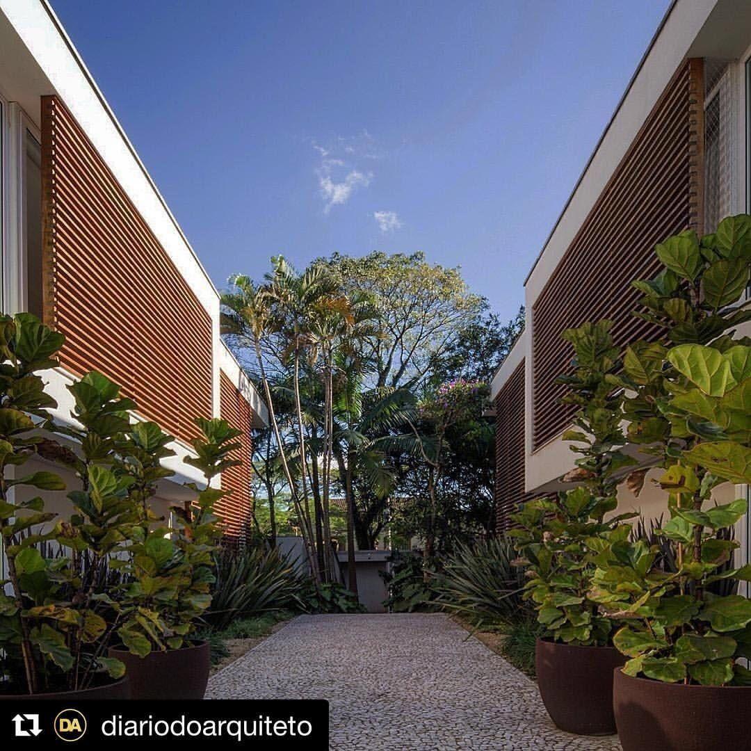 """60 Likes, 1 Comments - Caterina🍀Catê Poli Paisagismo (@cate_poli_paisagismo) on Instagram: """"#Repost @diariodoarquiteto (@get_repost) ・・・ Uma coisa que gosto bastante de fazer são projetos de…"""""""