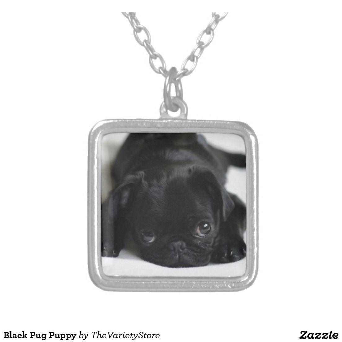 Black pug puppy silver plated necklace black pug puppy black pug