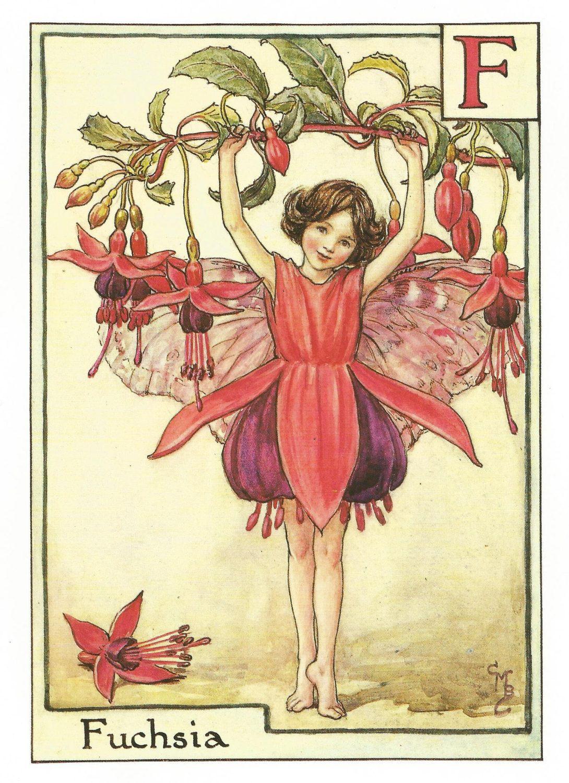 The Fuchsia Fairy By Cicely Mary Barker Flower Fairies Vintage Etsy Fairy Art Flower Fairies Vintage Fairies
