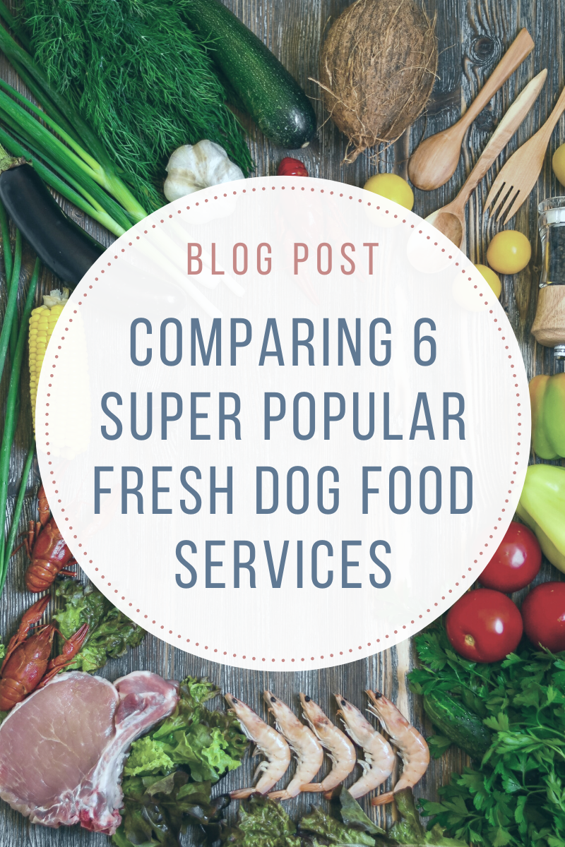 Comparing 6 Super Popular Fresh Dog Food Services in 2020