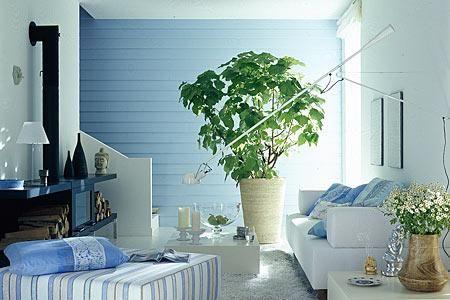 Farbige Wande 30 Wohnideen Mit Farbe Wohnen Schoner Wohnen Farbe Schoner Wohnen