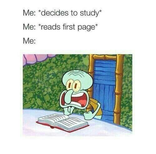 54 Hilarious Memes For Finals Week | The Funny Beaver