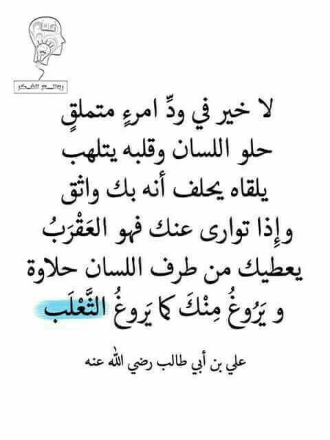 لا خير فى الثعلب Words Quotes Wise Quotes Ali Quotes