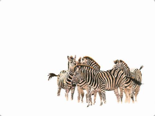 Sue Dickinson - Limited Editions - Dazzle Zebras