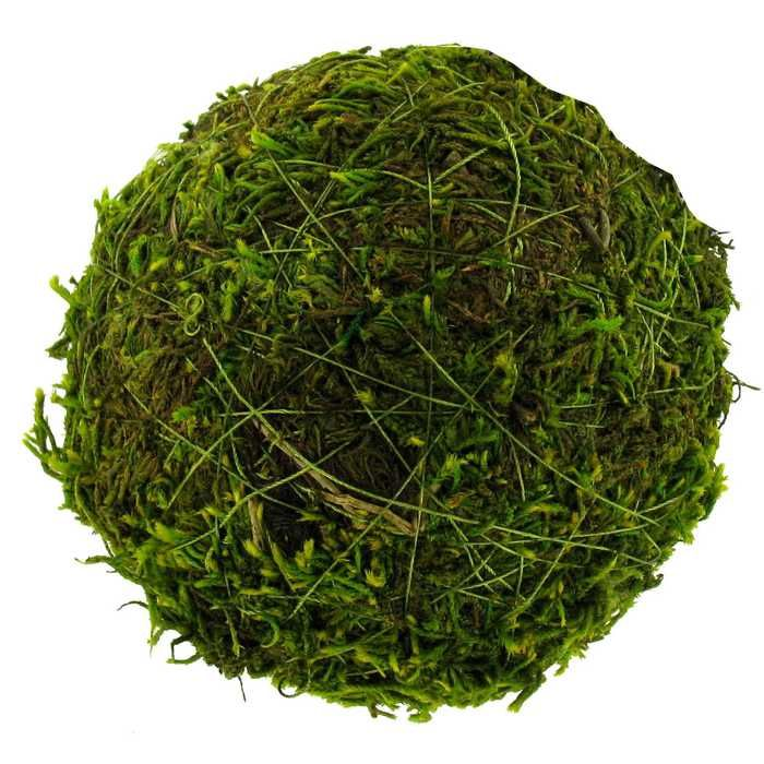"Decorative Moss Balls Unique 4"" Moss Ball  Christmas  Pinterest  Decorative Objects Farmhouse Design Decoration"