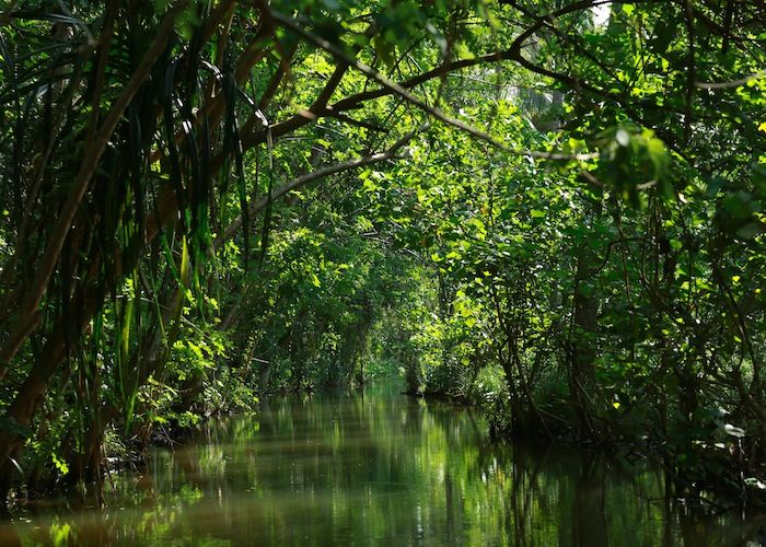 The river route..  The Backwaters of KeralaFaux Pas