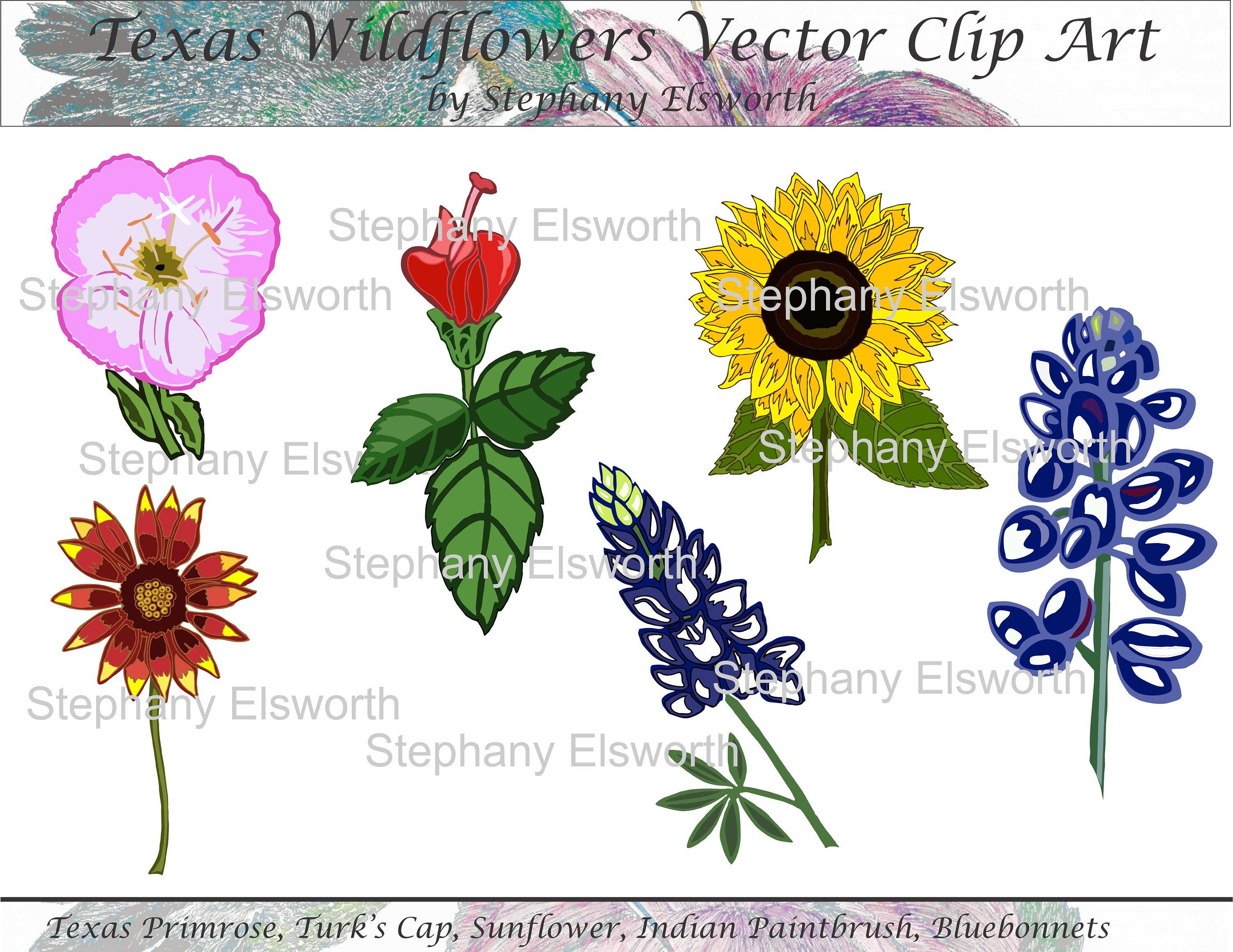 Texas Wildflowers Vector Clip Art | Clip art and Tatting