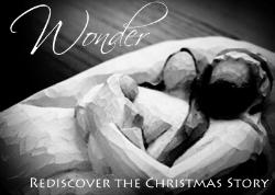 Wonder: Compelled to worship