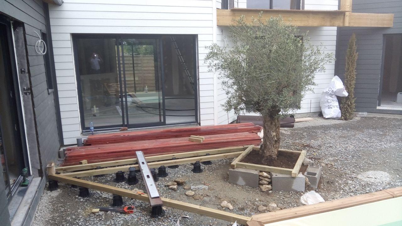 d marrage de la terrasse avec l 39 olivier install terrasse pinterest la terrasse. Black Bedroom Furniture Sets. Home Design Ideas
