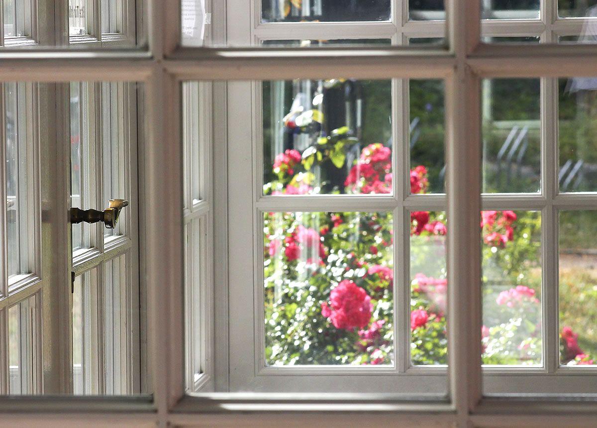 Eingangsbereich von unserem Gästehaus Dünenhaus.  #Dünenhaus #Rosen #Ahrenshoop #Gästehaus