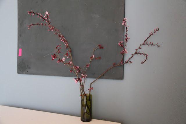 cherry flower stems
