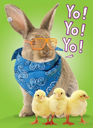 Funny Easter Card Shout Out To All My Peeps Happy Easter Hoppy