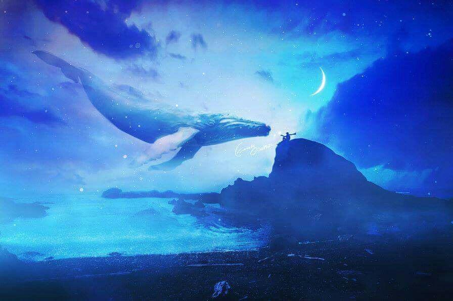 киты в небе картинки высокого разрешения пропитка