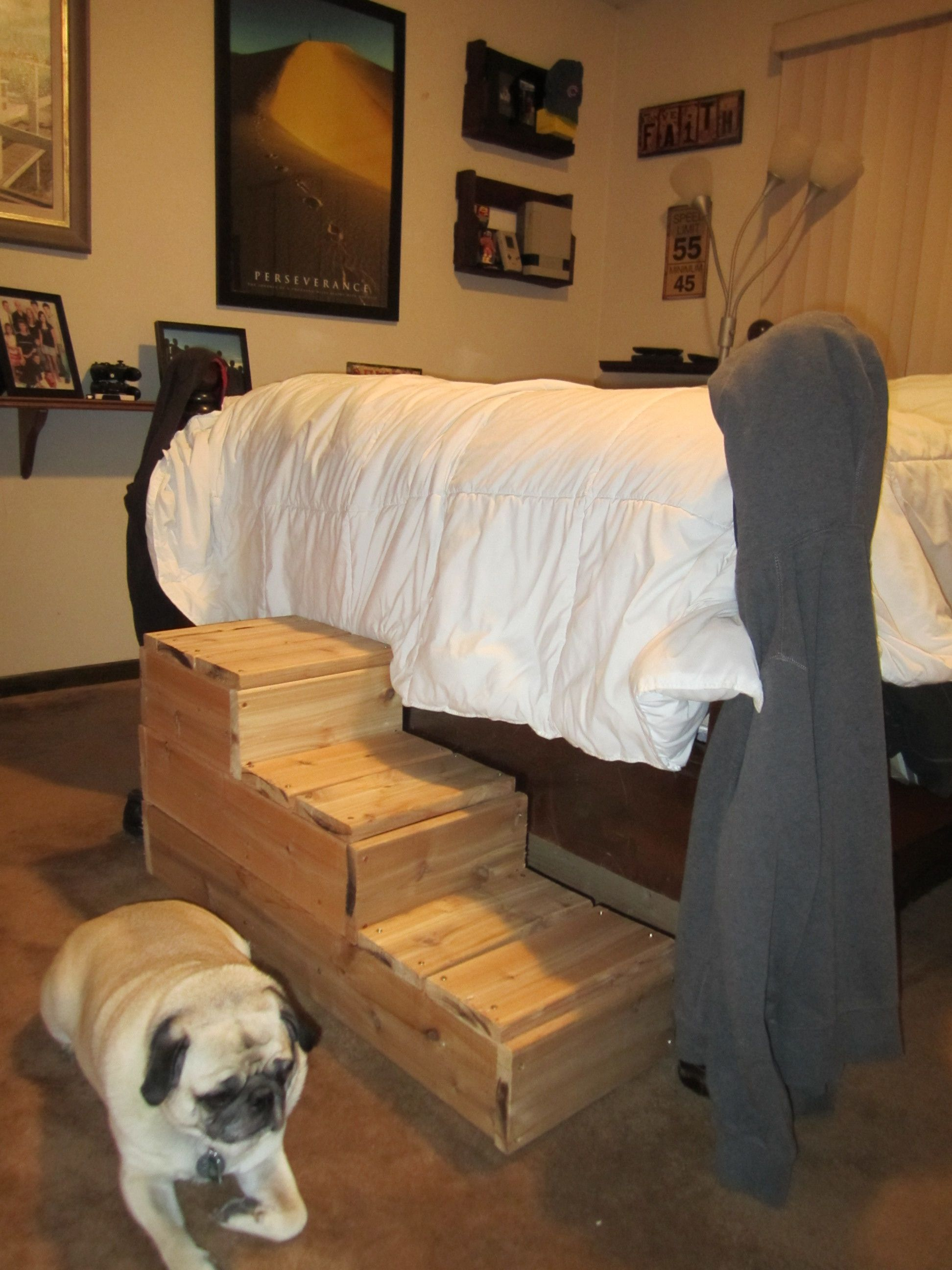 choosing id dog bed stairs for picture take the of large pet layout