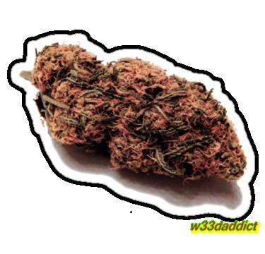 #w33daddict #Buds #weed #Marijuana #Ganja