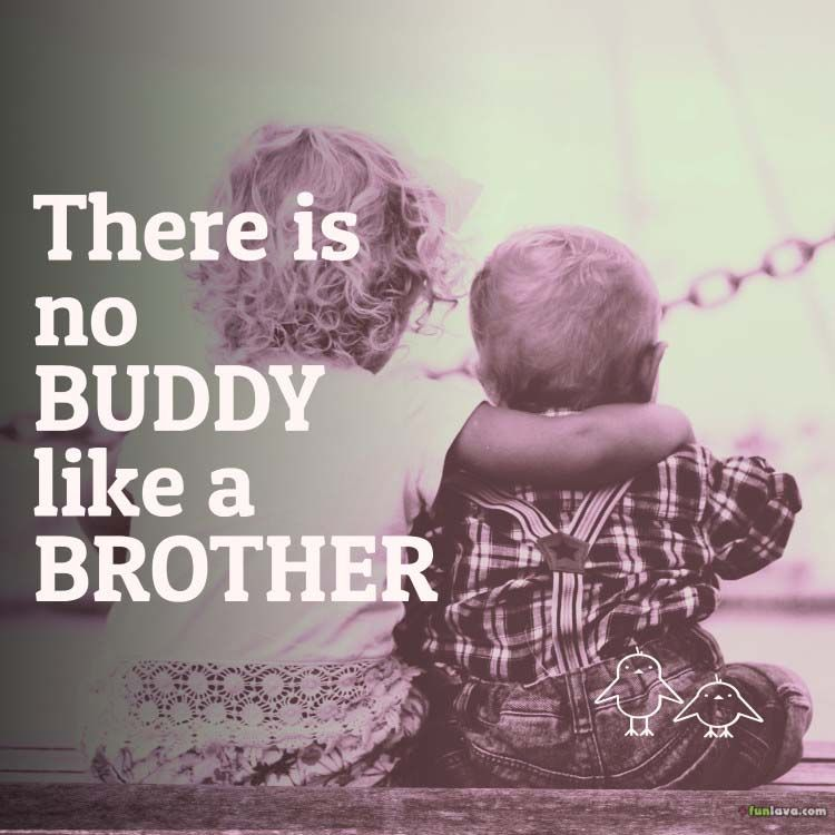 Funny Brother Quotes Funny Brother Quotes Brother Sister Quotes Sister Quotes