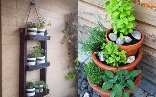 Eigenes Gemüse Auch Ohne Garten Garten Garden Small Herb