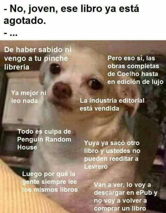 Pin De Anyelo Reyes En Memes En Espanol Memes De Libros Memes Divertidos Memes