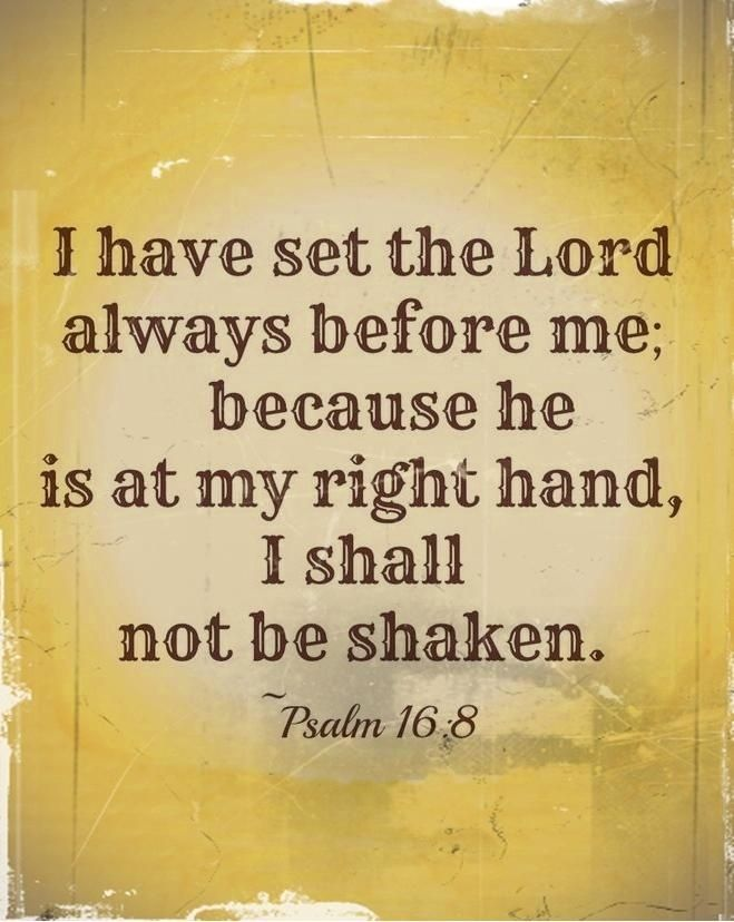 God Is My Strength Bible Verse   The Lord Is My Strength   Bible Verses
