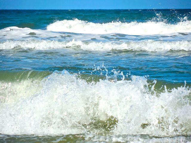bonita rose life love color art the sound of the ocean beach rh pinterest com au
