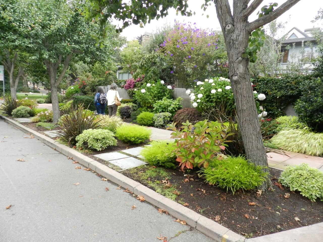 curb appeal tips outdoor living