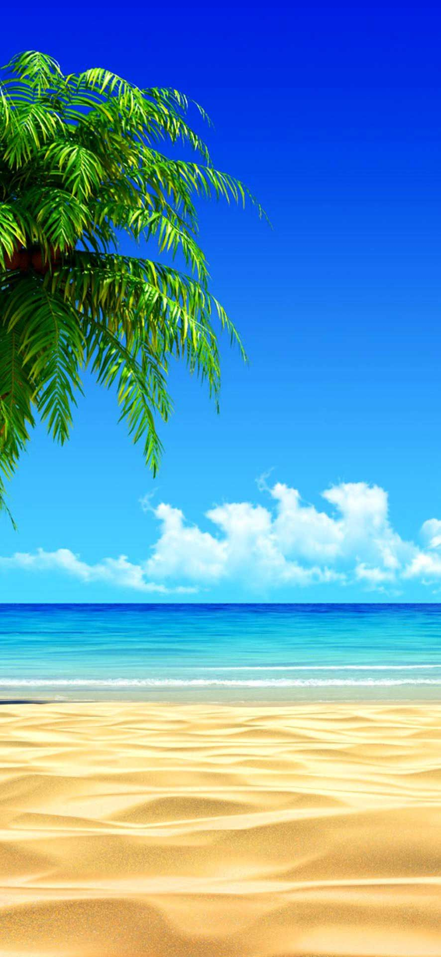 Iphone X Wallpaper Beach House On Tropical Island Hd Wallpaper Beach Hd In 2020 Summer Beach Wallpaper Summer Wallpaper Beach Wallpaper