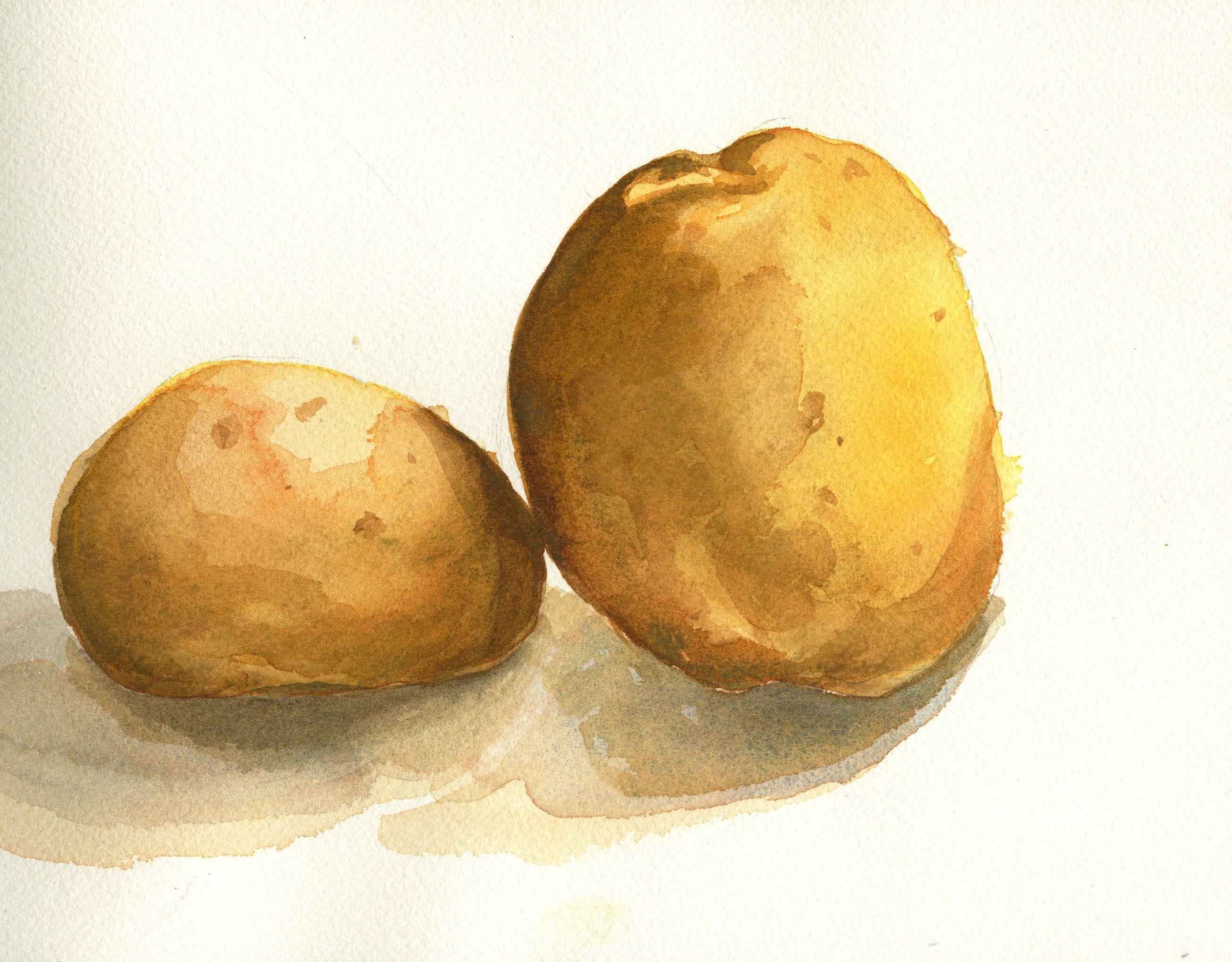 рисунки из картофеля предположить, что энки