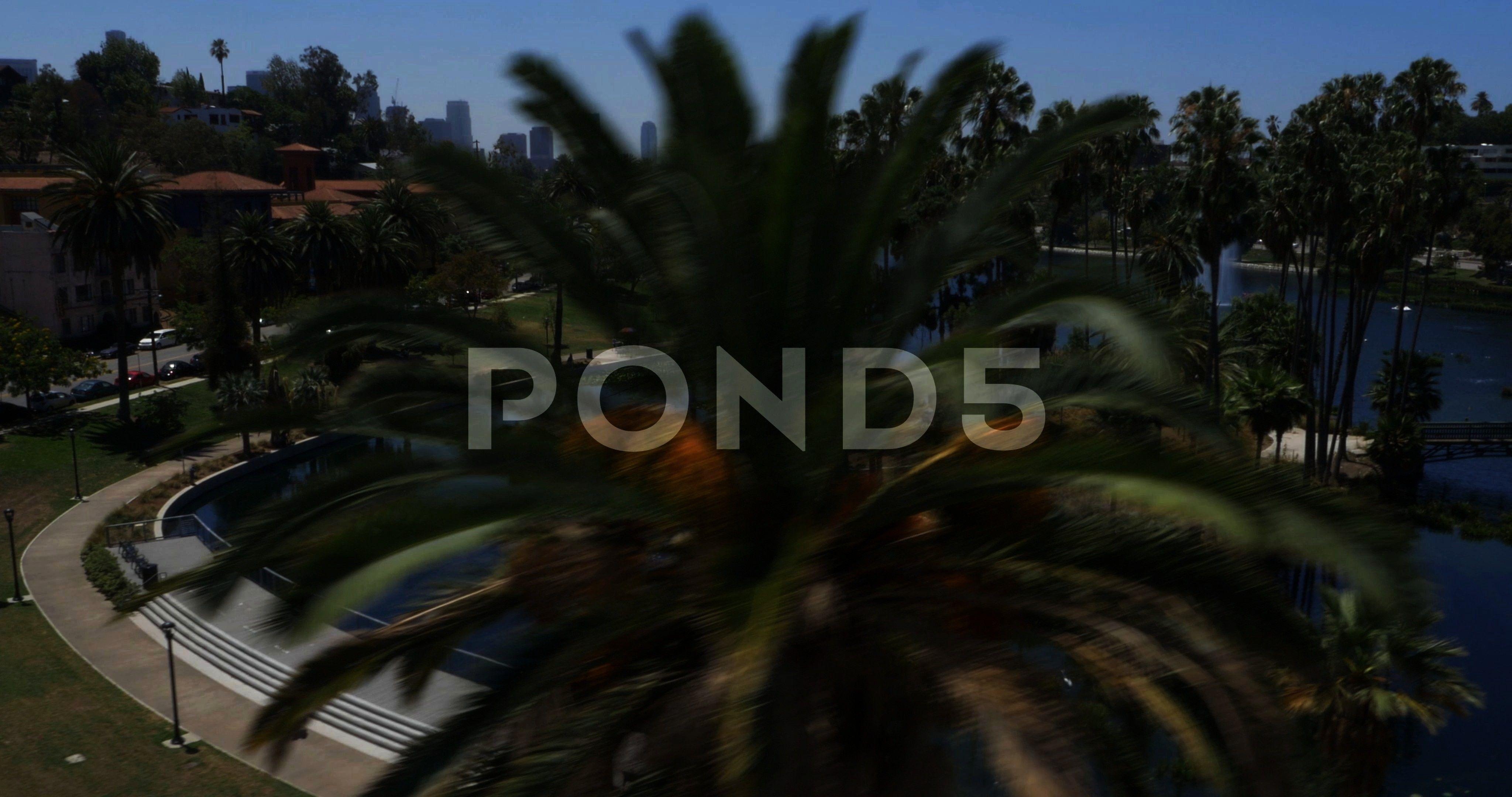 Echo Park Lake in Los Angeles California Stock Footage ParkLakeEchoAerialAerial Reveal of Echo Park Lake in Los Angeles California Stock Footage ParkLakeEchoAerialReveal...