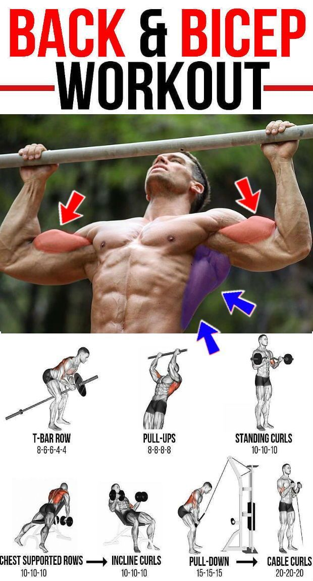 Back And Biceps: The Best Workout Combination - GymGuider.com