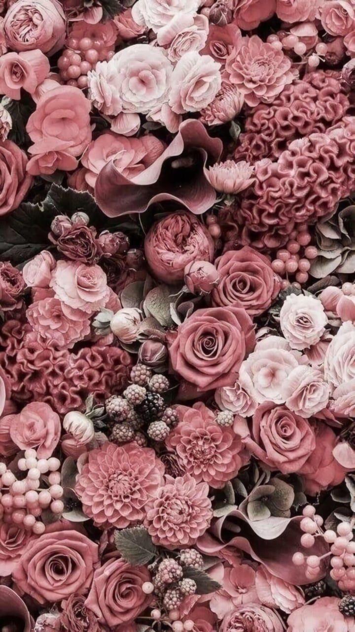 #flowershintergrundbilder
