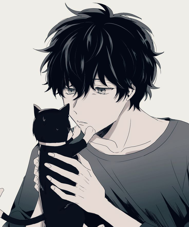 Photo of Phoenix sees the cat, Merlin Reiji and …