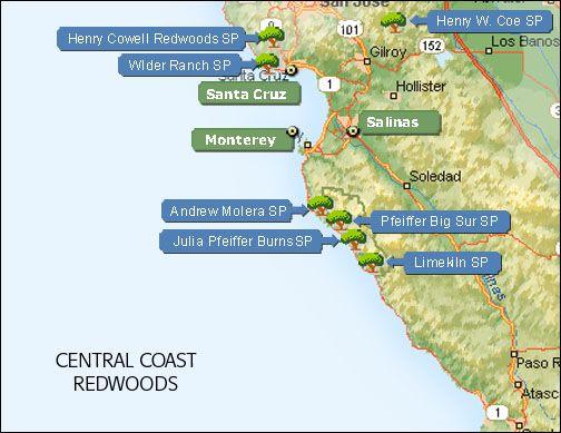 Map Of California Coastal Red Woods Cali Coast Road Trip Honeymoon