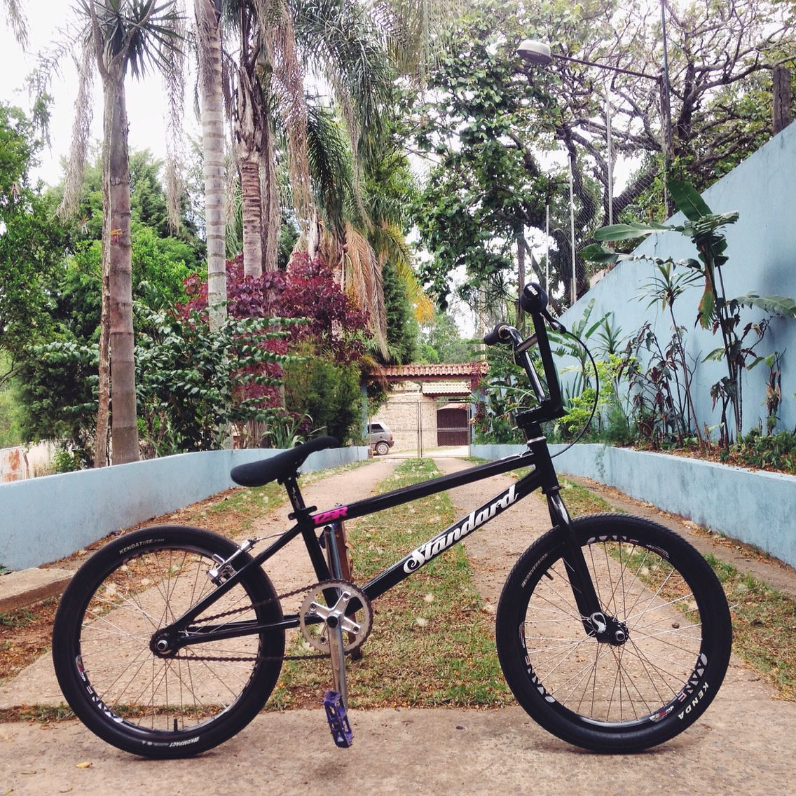 My Standard 125r Race Bmx With S M Odyssey Madera Profile Sbc Parts Fast Bmx Bicycle Action Sports
