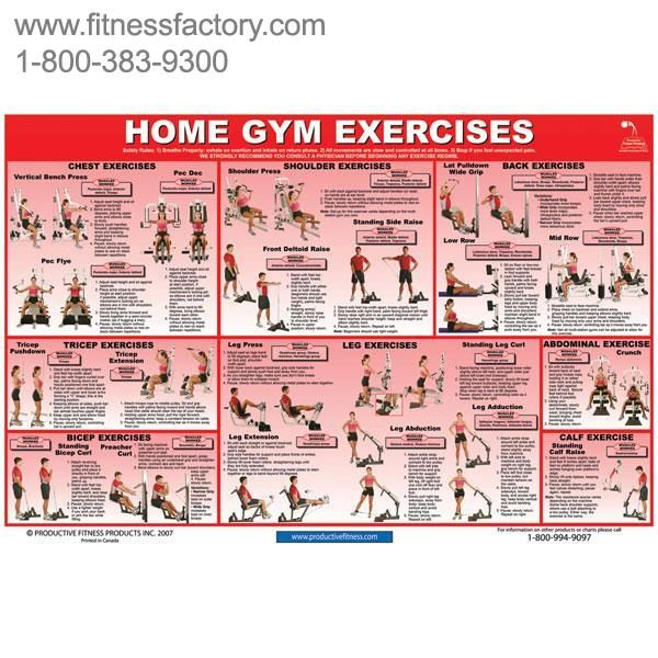 Home gym exercises chart pfchgl this poster features