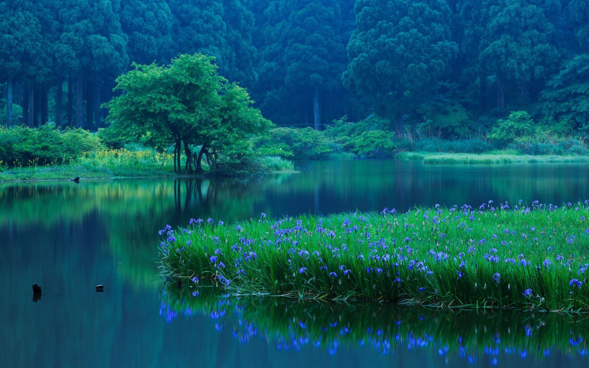 картинки на рабочий стол на синем фоне природа