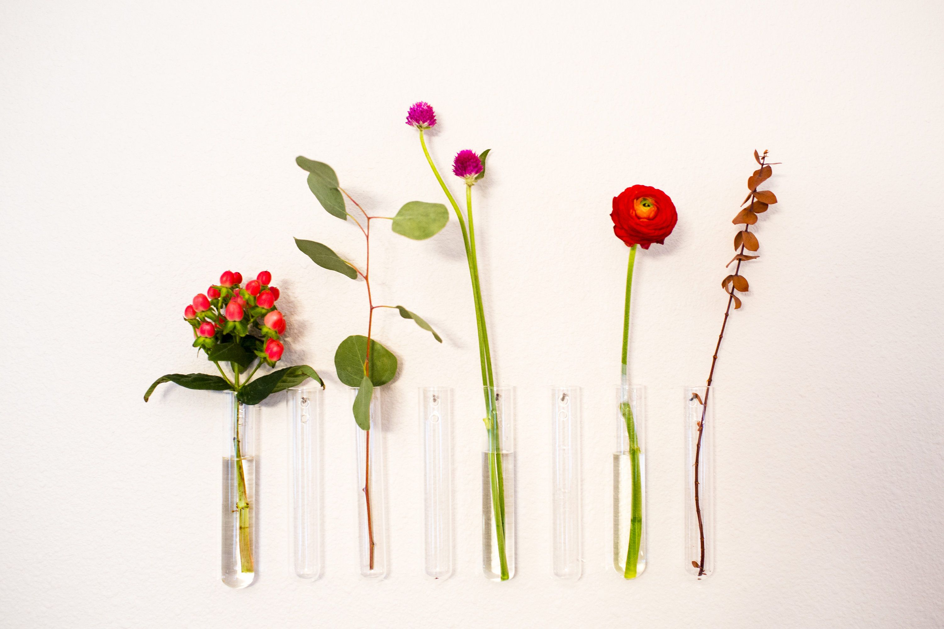 This Item Is Unavailable Wall Flower Vases Glass Wall Vase Wall Vase