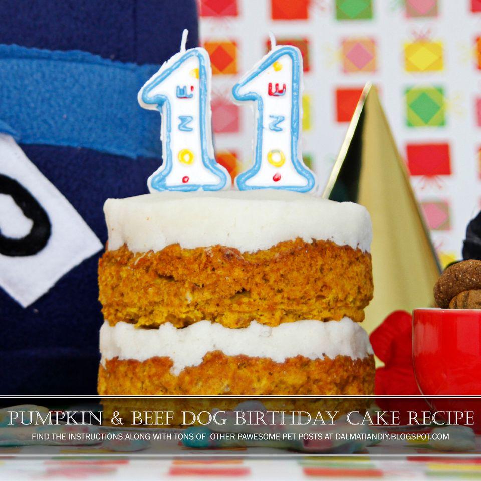 Recipe Layered Pumpkin And Beef Dog Birthday Cake Dog Birthday